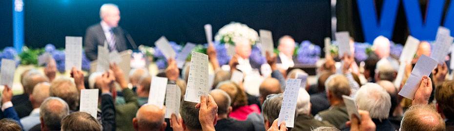 Abstimmung Vertreterversammlung